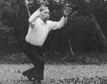 Sawai-Sensei-showing-his-Taikiken-Hai-exercise-in-Meiji-Jiro-park-Tokyo-Japan