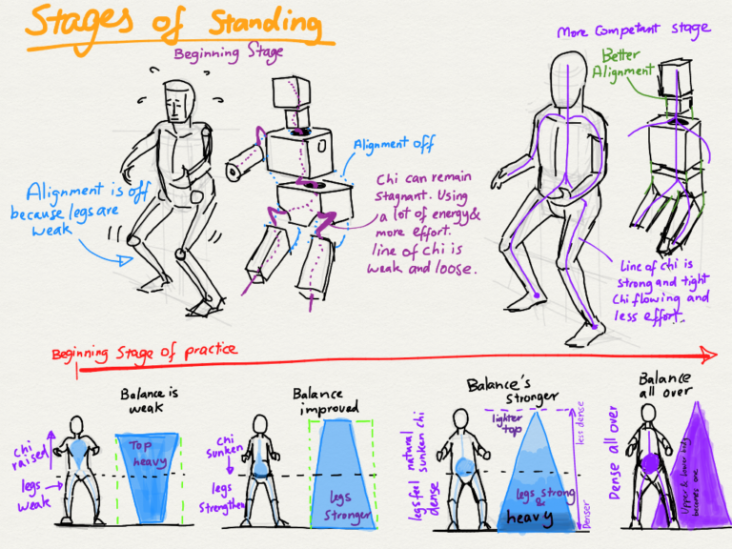 stages-of-standing-