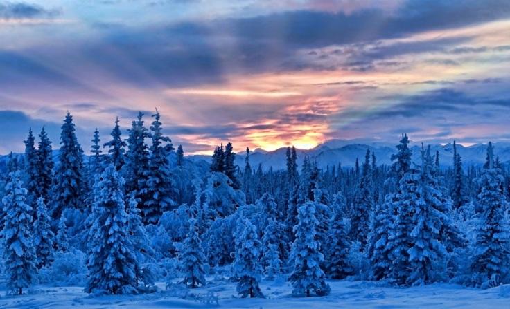 jlsphotography-alaska.900x600